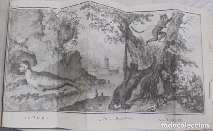 Libros antiguos: CURSO DE HISTORIA NATURAL. TOMO SEGUNDO. 1770. PARIS. GRABADOS. CHEZ DESAINT. LEER. VER - Foto 9 - 96486427