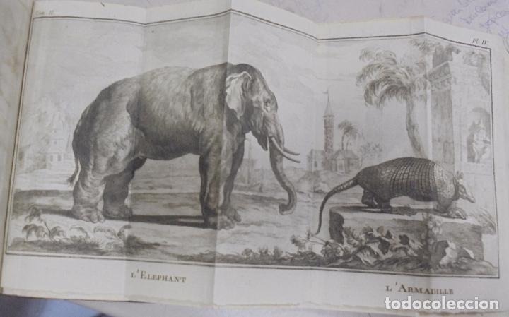 Libros antiguos: CURSO DE HISTORIA NATURAL. TOMO SEGUNDO. 1770. PARIS. GRABADOS. CHEZ DESAINT. LEER. VER - Foto 10 - 96486427