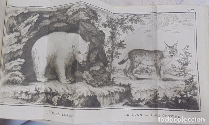 Libros antiguos: CURSO DE HISTORIA NATURAL. TOMO SEGUNDO. 1770. PARIS. GRABADOS. CHEZ DESAINT. LEER. VER - Foto 11 - 96486427