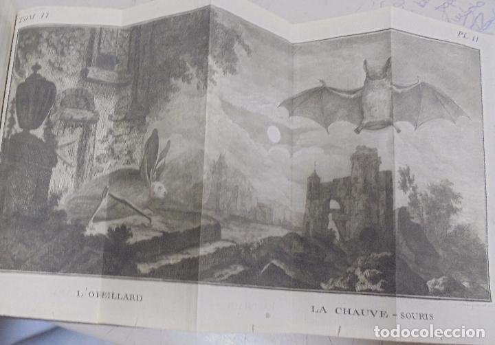 Libros antiguos: CURSO DE HISTORIA NATURAL. TOMO SEGUNDO. 1770. PARIS. GRABADOS. CHEZ DESAINT. LEER. VER - Foto 12 - 96486427