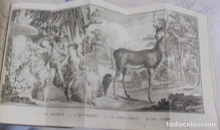 Libros antiguos: CURSO DE HISTORIA NATURAL. TOMO SEGUNDO. 1770. PARIS. GRABADOS. CHEZ DESAINT. LEER. VER - Foto 13 - 96486427