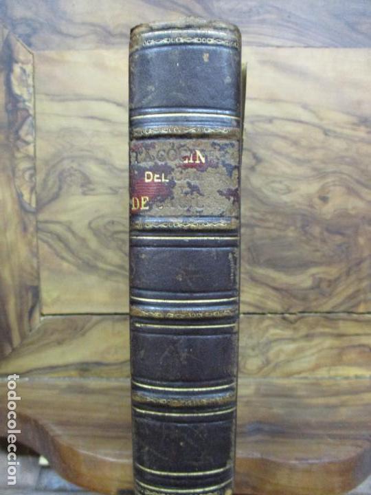 Libros antiguos: LA COCINERA DEL CAMPO Y DE LA CIUDAD Ó NUEVA COCINERA ECONÓMICA. 1883. - Foto 2 - 97070823