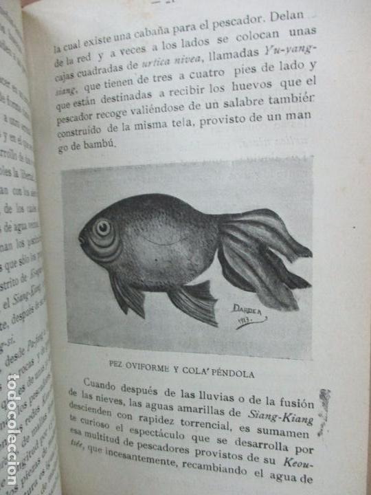 Libros antiguos: PISCICULTURA. FRANCISCO DE A. DARDER Y JERÓNIMO DARDER. 1913. - Foto 6 - 97386023