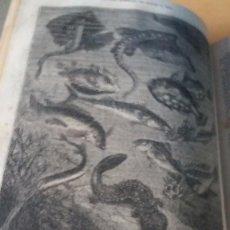 Libros antiguos: JULIO VERNE -VEINTE MIL LEGUAS DE VIAJE SUBMARINO. +DE LA TIERRA A LA LUNA. +LOS FRANCO TIRADORES. Lote 97416147