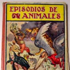 Libros antiguos: EPISODIOS DE ANIMALES. CUENTOS INFANTILES. 1919 EDITORIAL RAMÓN SOPENA. TAPA DURA.. Lote 98782439