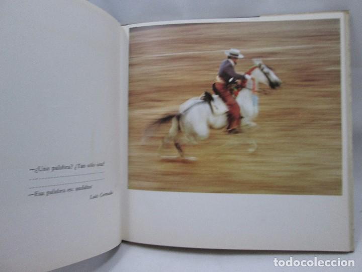 Libros antiguos: LIBRO LA CORRIDA TOROS JUAN CAPDEVILA - LA GAYA CIENCIA - 1979 - MUY RARO! - Foto 6 - 99092735