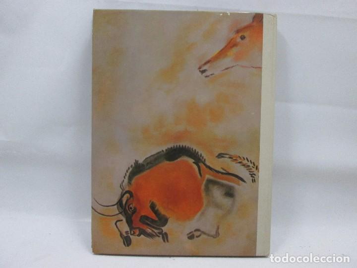 Libros antiguos: GRANDES ENIGMAS DEL HOMBRE - LOS ORIGENES DEL HOMBRE I - EDITORIAL FERNI - Foto 2 - 99094643