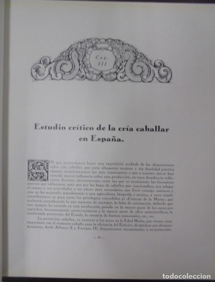 Libros antiguos: RECOPILACION DE ESTUDIOS DE CRIA CABALLAR. EJEMPLAR NUMERADO. 1931. JEREZ. ILUSTRADO. LEER - Foto 6 - 99517851