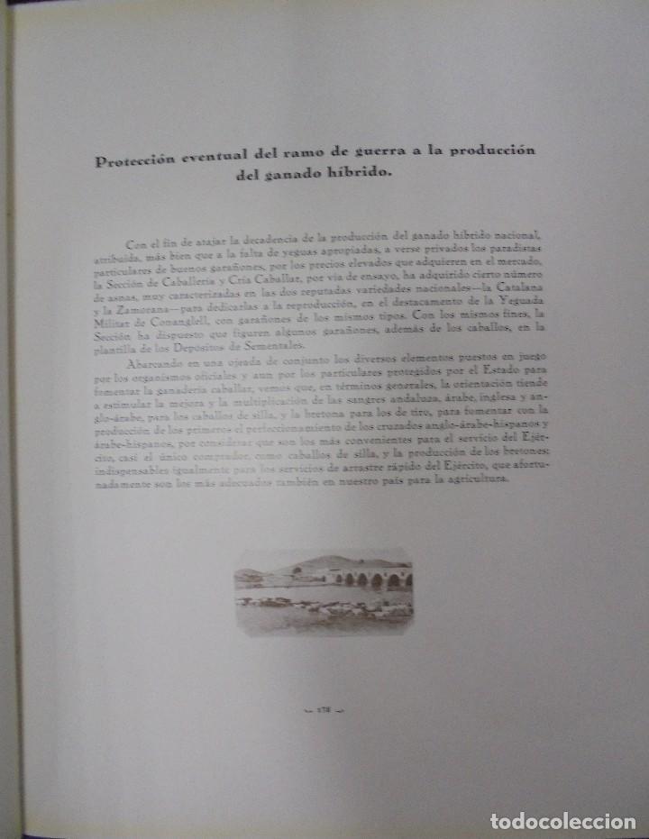 Libros antiguos: RECOPILACION DE ESTUDIOS DE CRIA CABALLAR. EJEMPLAR NUMERADO. 1931. JEREZ. ILUSTRADO. LEER - Foto 12 - 99517851