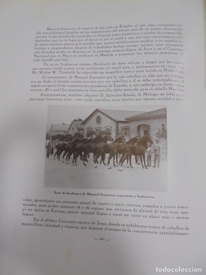 Libros antiguos: RECOPILACION DE ESTUDIOS DE CRIA CABALLAR. EJEMPLAR NUMERADO. 1931. JEREZ. ILUSTRADO. LEER - Foto 16 - 99517851