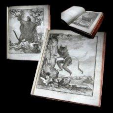 Libros antiguos: AÑO 1786 HISTORIA NATURAL DE BUFFON 43 ESPECTACULARES GRABADOS ZOOLOGÍA PARIS IMPRENTA REAL 24 CM. Lote 104067419