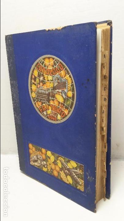CATALOGO FRUTERO DE ESPAÑA1949. (Libros Antiguos, Raros y Curiosos - Ciencias, Manuales y Oficios - Otros)
