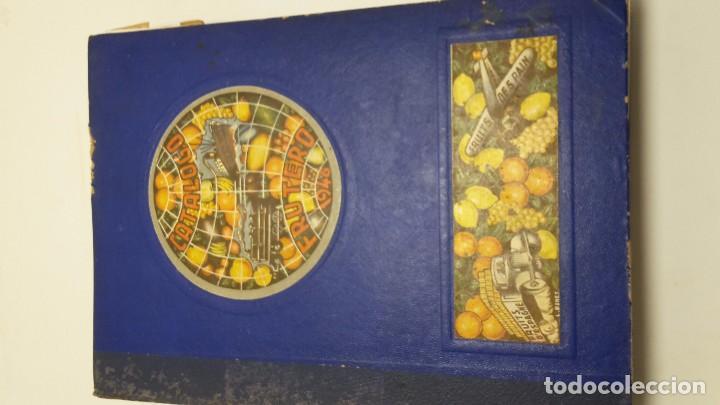 Libros antiguos: CATALOGO FRUTERO DE ESPAÑA1949. - Foto 2 - 104282311