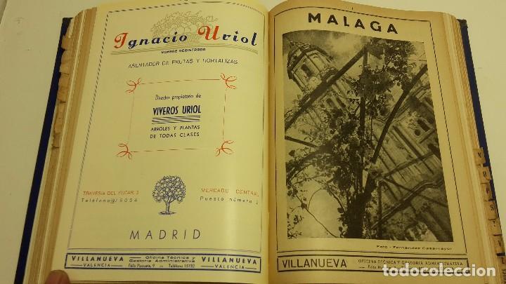 Libros antiguos: CATALOGO FRUTERO DE ESPAÑA1949. - Foto 11 - 104282311