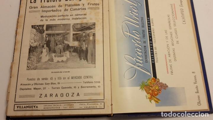 Libros antiguos: CATALOGO FRUTERO DE ESPAÑA1949. - Foto 12 - 104282311
