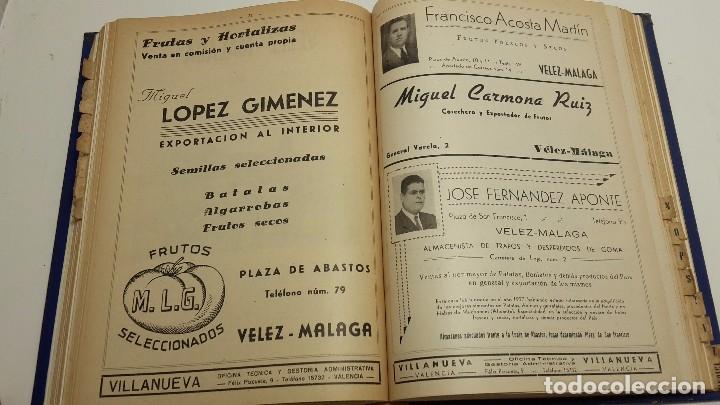 Libros antiguos: CATALOGO FRUTERO DE ESPAÑA1949. - Foto 13 - 104282311