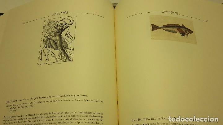 Libros antiguos: EL GRABADO EN LA CIENCIA HISPÁNICA, J.M. LÓPEZ PIÑERO, SIN ABRIR. - Foto 7 - 104301087
