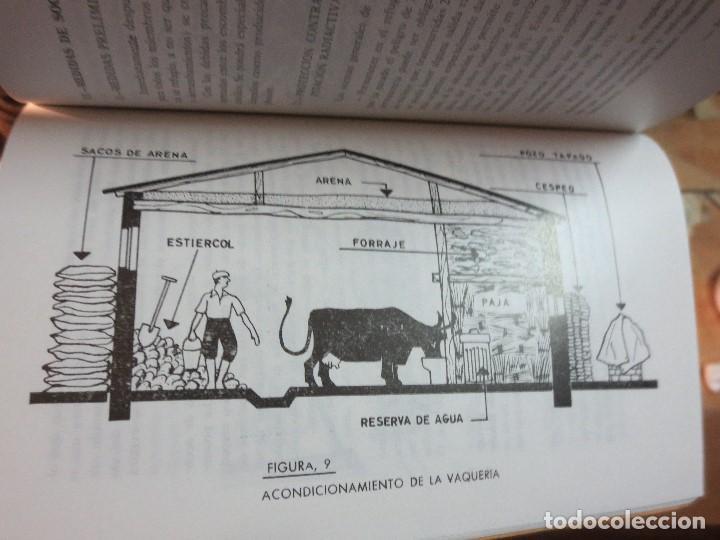 Libros antiguos: realizar REFUGIOS o bunker para PROTECCION en casa CIVIL CONSEJOS para casos extremos aislacion - Foto 7 - 106660923