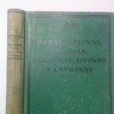Libros antiguos: RAZAS BOVINAS EQUINAS PORCINAS OVINAS Y CAPRINAS 1932 F. FAELLI ED. REVISTA VETERINARIA DE ESPAÑA. Lote 215752240