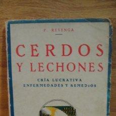 Libri antichi: CERDOS Y LECHONES - P. RAVENGA - EDICIONES INDUSTRIA , AÑO 1934. Lote 110275479