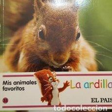 Libros antiguos: MIS AMIMALES FAVORITOS - LA ARDILLA - EL PAIS -. Lote 111472487