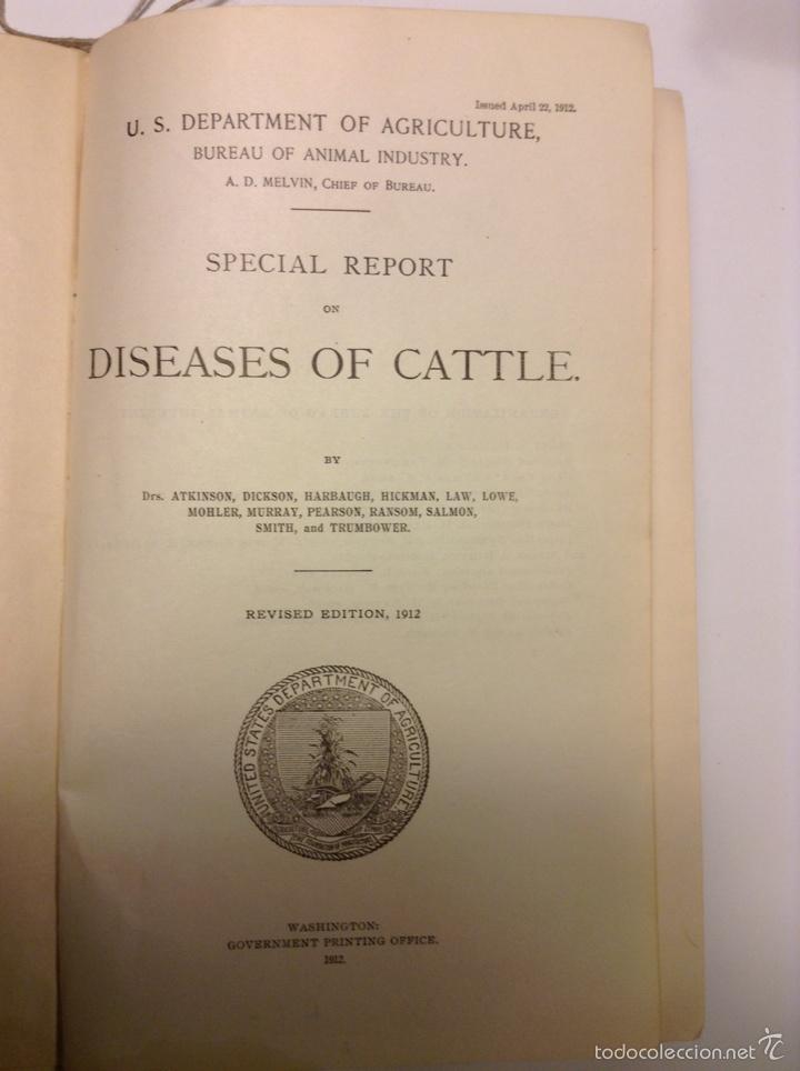 SPECIAL REPORT ON DISEASES OF CATTLE. 1912. VETERINARIA. GANADERÍA. AGRICULTURA (Libros Antiguos, Raros y Curiosos - Ciencias, Manuales y Oficios - Otros)