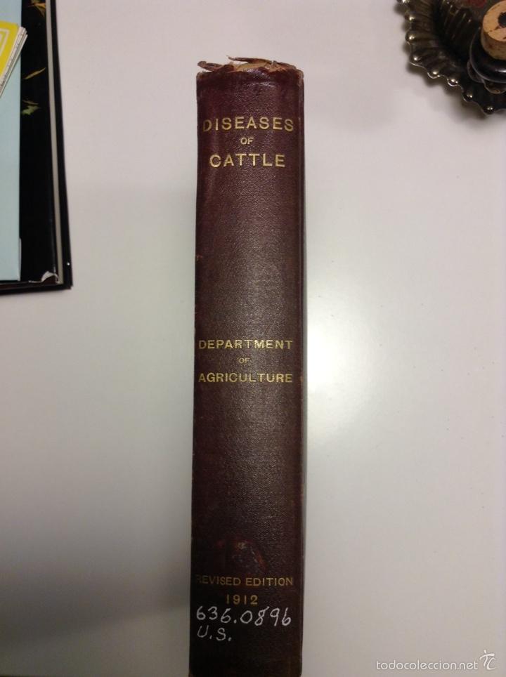 Libros antiguos: Special report on diseases of cattle. 1912. Veterinaria. Ganadería. Agricultura - Foto 3 - 112145187