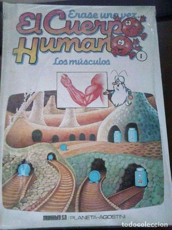 ERASE UNA VEZ EL CUERPO HUMANO (Libros Antiguos, Raros y Curiosos - Literatura Infantil y Juvenil - Otros)