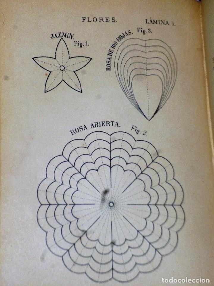 Libros antiguos: MÉTODO PRÁCTICO DE LABORES - Foto 3 - 115149711