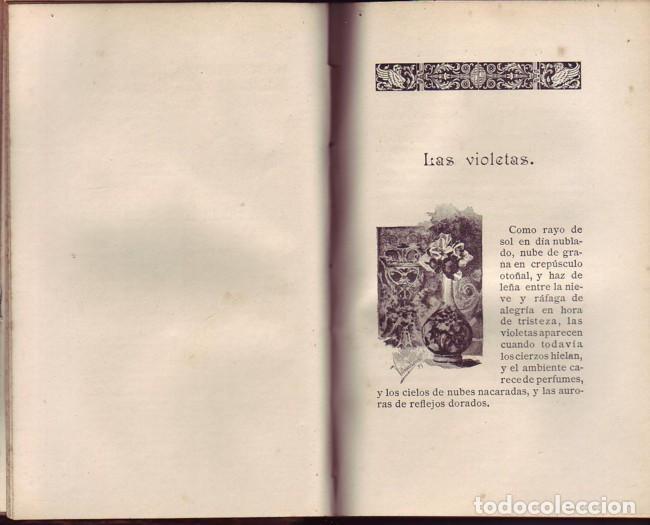 Libros antiguos: Vida moderna (Manchas de color). Carlos Ossorio y Gallardo, La España editorial, 1890 - Foto 3 - 115382031