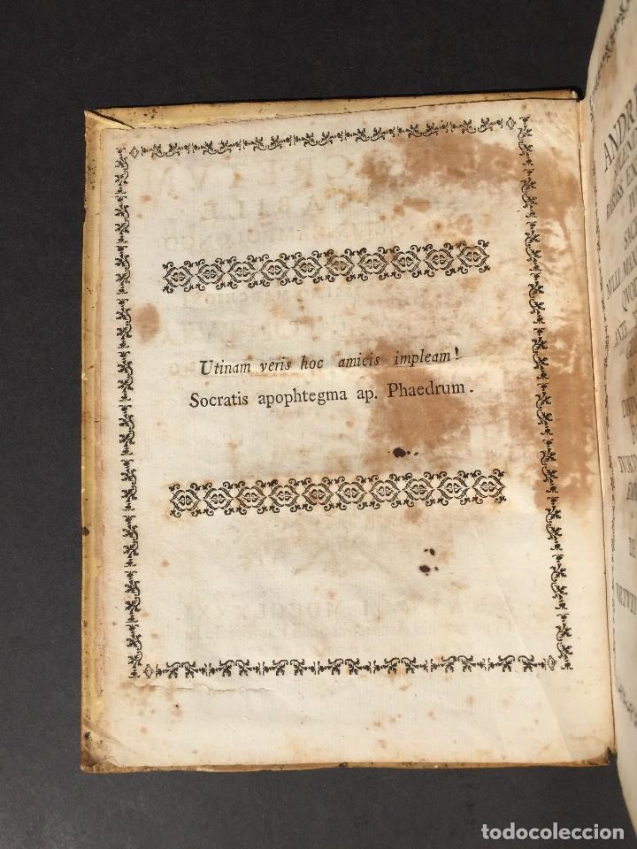Libros antiguos: 1781 - Sepulcretum Amicabile - Rarisimo libro que contiene 1900 epitafios - Cementerio - Foto 13 - 117013087
