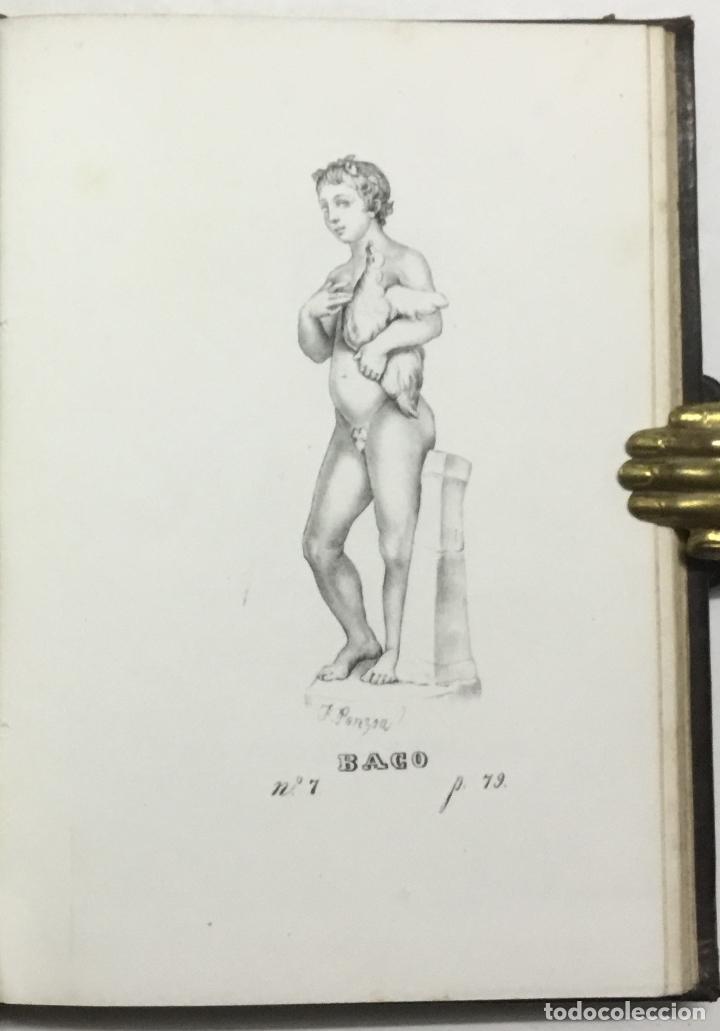 Libros antiguos: NOTICIA DE LOS MUSEOS DEL SEÑOR CARDENAL DESPUIG EXISTENTES EN MALLORCA. - BOVER, Joaquín María. - Foto 9 - 114797999