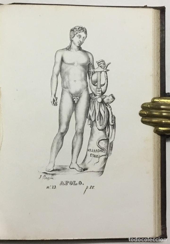 Libros antiguos: NOTICIA DE LOS MUSEOS DEL SEÑOR CARDENAL DESPUIG EXISTENTES EN MALLORCA. - BOVER, Joaquín María. - Foto 12 - 114797999