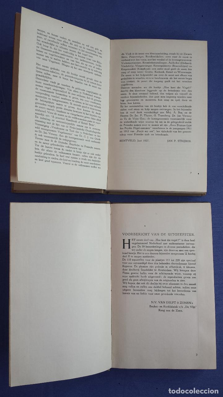 Libros antiguos: Libro holandes, Hoe heet die Vogel, Jan P. Strybos, 2 libros (cada uno con 110 imagenes), 1927 - Foto 9 - 117242231