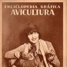 Libros antiguos: ENCICLOPEDIA GRÁFICA AVICULTURA (ED. CERVANTES, 1929). Lote 173070049