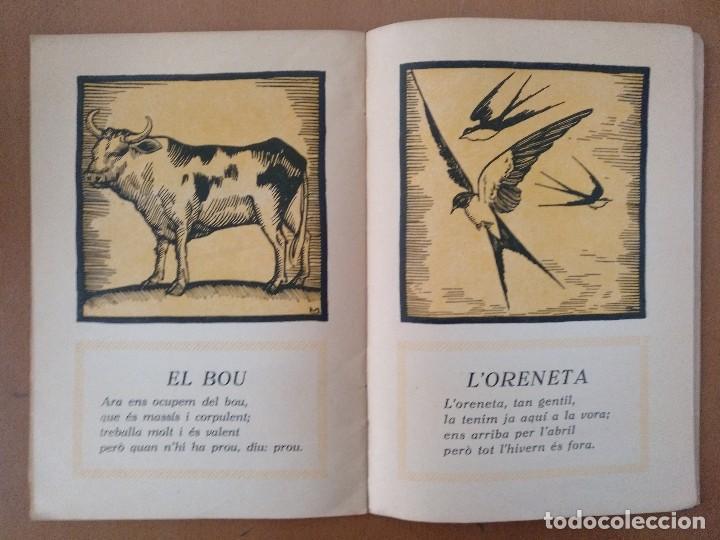 Libros antiguos: AUCA DE LES BESTIES DIBUJOS DE MACAYA RUSTICA 17 X 24,5 CM (APROX) - Foto 2 - 119431827