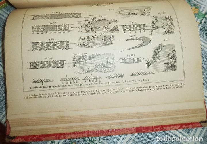 Libros antiguos: DICCIONARIO ILUSTRADO DESCRIPTIVO ... ARTES APAREJOS ... PESCA ... BENIGNO RODRÍGUEZ ORIGINAL 1911 - Foto 4 - 119740819