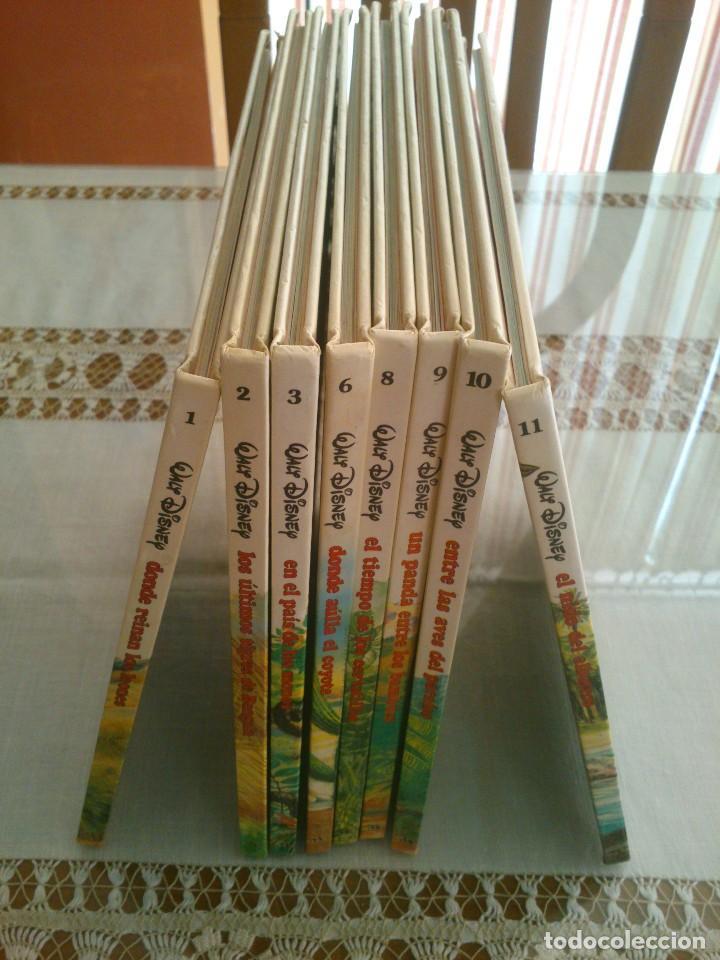 Libros antiguos: LOTE DE 8 LIBROS DE LOS JOVENES CASTORES DE WALT DISNEY - Foto 2 - 120135691