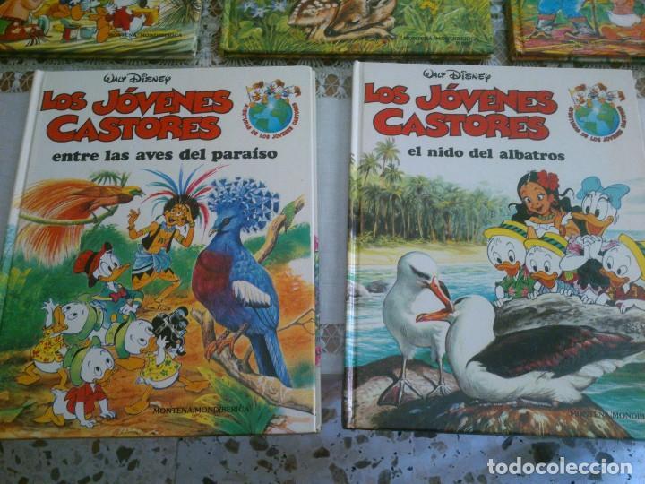 Libros antiguos: LOTE DE 8 LIBROS DE LOS JOVENES CASTORES DE WALT DISNEY - Foto 5 - 120135691