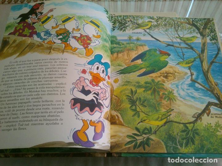 Libros antiguos: LOTE DE 8 LIBROS DE LOS JOVENES CASTORES DE WALT DISNEY - Foto 10 - 120135691