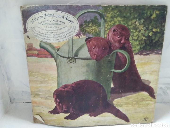 Libros antiguos: EL REINO ANIMAL PARA NIÑOS. AVES Y ANIMALES DE CAZA - Foto 2 - 121060058