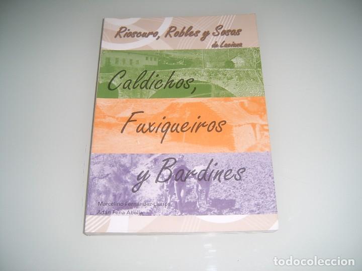 LIBRO DEL VALLE DE LACIANA SOBRE RIOSCURO ROBLES Y SOSAS (Libros Antiguos, Raros y Curiosos - Historia - Otros)