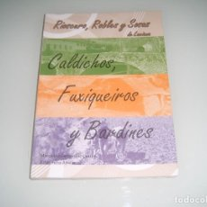 Libros antiguos: LIBRO DEL VALLE DE LACIANA SOBRE RIOSCURO ROBLES Y SOSAS. Lote 123531947