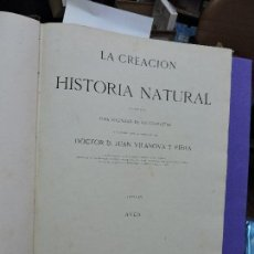 Libros antiguos: LA CREACIÓN HISTORIA NATURAL TOMO IV AVES. VILANOVA Y PIERA, JUAN. ED. MONTANER Y SIMON. 1874. Lote 123562491