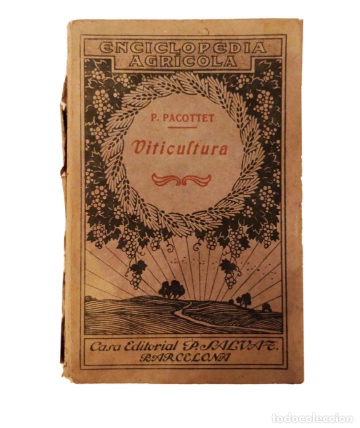 VITICULTURA, PABLO PACOTTET, 1918 (Libros Antiguos, Raros y Curiosos - Cocina y Gastronomía)