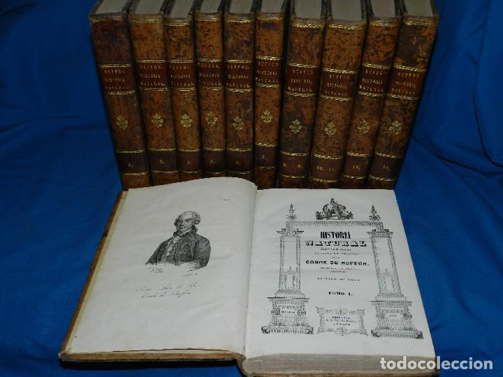 Libros antiguos: (MF) CONDE DE BUFFON - HISTORIA NATURAL GENERAL ,13 TOMOS COMPLETA MADRID 1844 IMP. VICENTE FROSSART - Foto 1 - 125950511