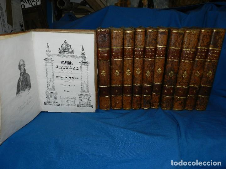 Libros antiguos: (MF) CONDE DE BUFFON - HISTORIA NATURAL GENERAL ,13 TOMOS COMPLETA MADRID 1844 IMP. VICENTE FROSSART - Foto 2 - 125950511