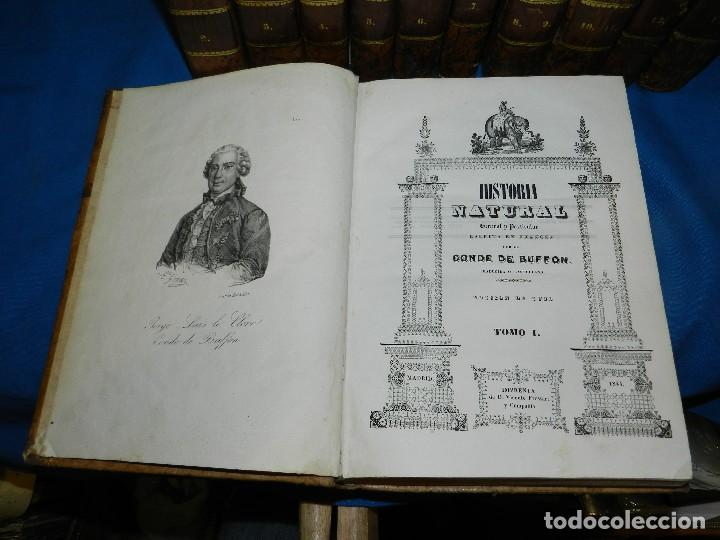 Libros antiguos: (MF) CONDE DE BUFFON - HISTORIA NATURAL GENERAL ,13 TOMOS COMPLETA MADRID 1844 IMP. VICENTE FROSSART - Foto 3 - 125950511