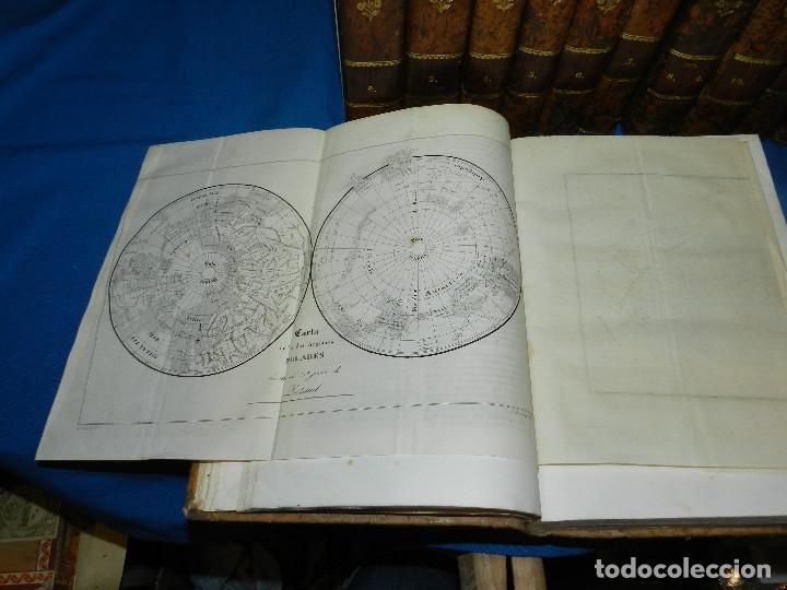 Libros antiguos: (MF) CONDE DE BUFFON - HISTORIA NATURAL GENERAL ,13 TOMOS COMPLETA MADRID 1844 IMP. VICENTE FROSSART - Foto 4 - 125950511