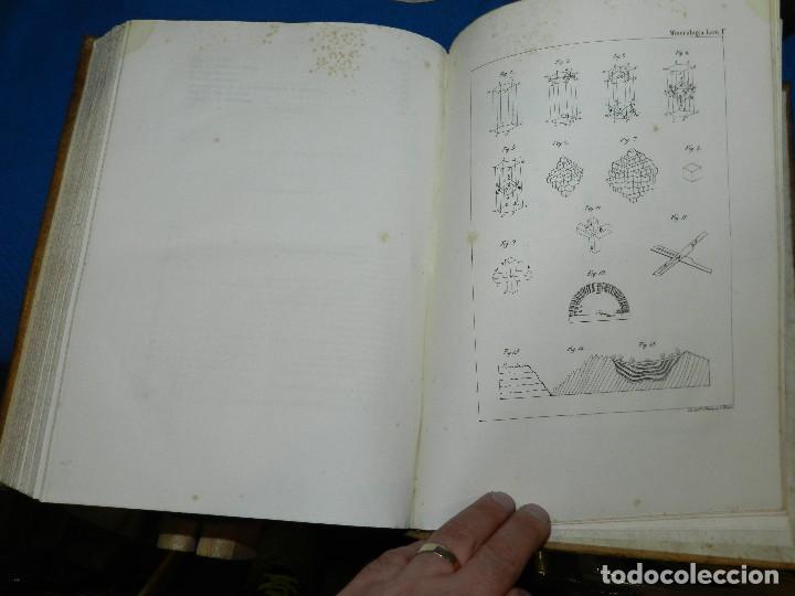 Libros antiguos: (MF) CONDE DE BUFFON - HISTORIA NATURAL GENERAL ,13 TOMOS COMPLETA MADRID 1844 IMP. VICENTE FROSSART - Foto 17 - 125950511